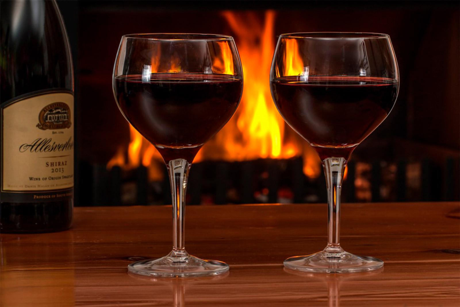 copa oporto tipos de copas de vino